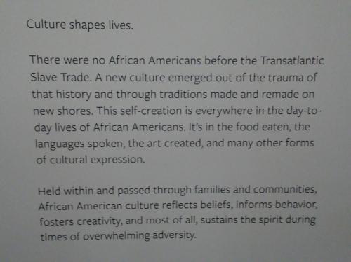 NMAAHC - Culture Shape Lives